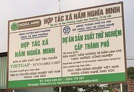 Hợp tác xã Nâm Nghĩa Minh